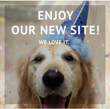 Enjoy Our New Site
